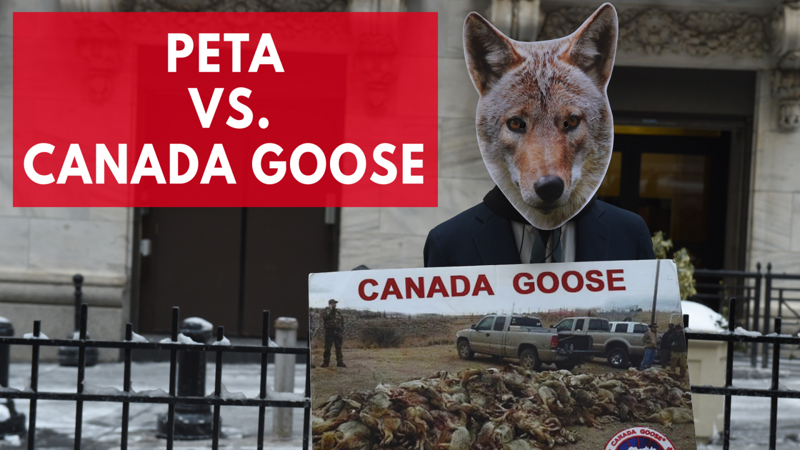 Kate Upton and Canada Goose Partnership Faces Questions from Peta